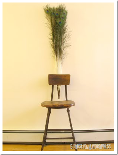 peacock chair-victoria fang